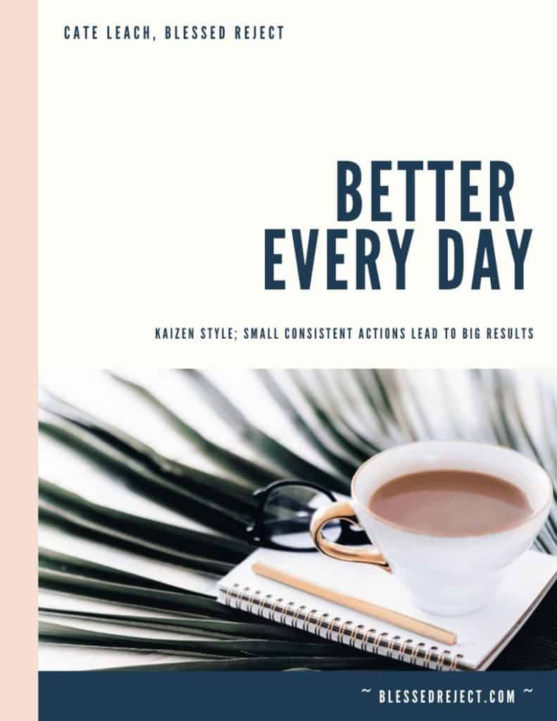 eBook Cover Better Every Day