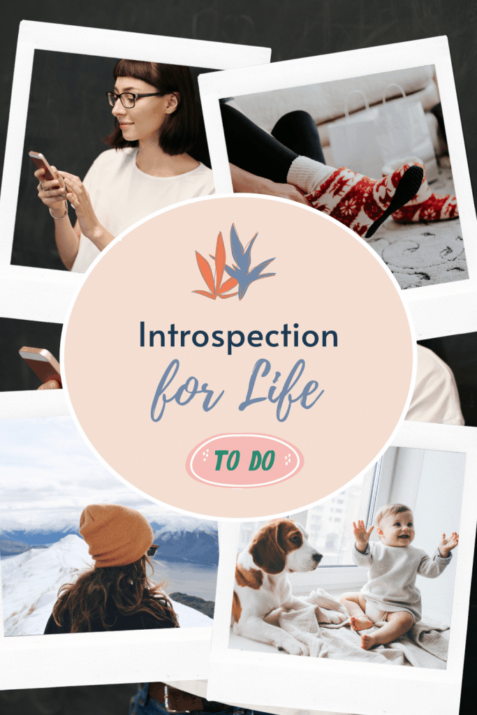introspection and self-reflection
