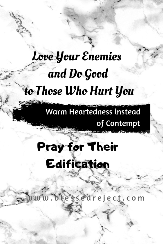 Choosing to love your enemy includes praying for them, choosing not to hold them in contempt and edifying them. Love your enemies!