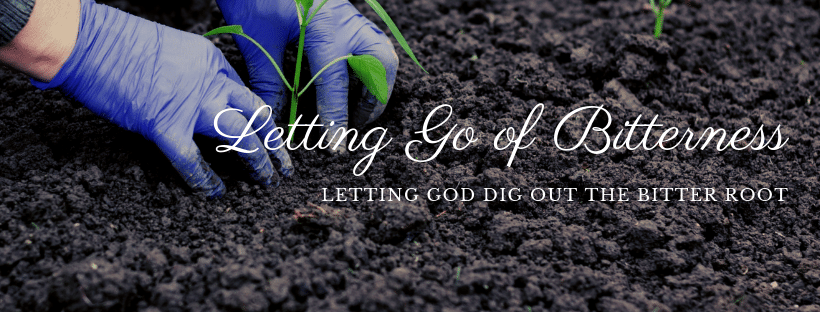 Letting go of bitterness, letting God dig out the bitter root