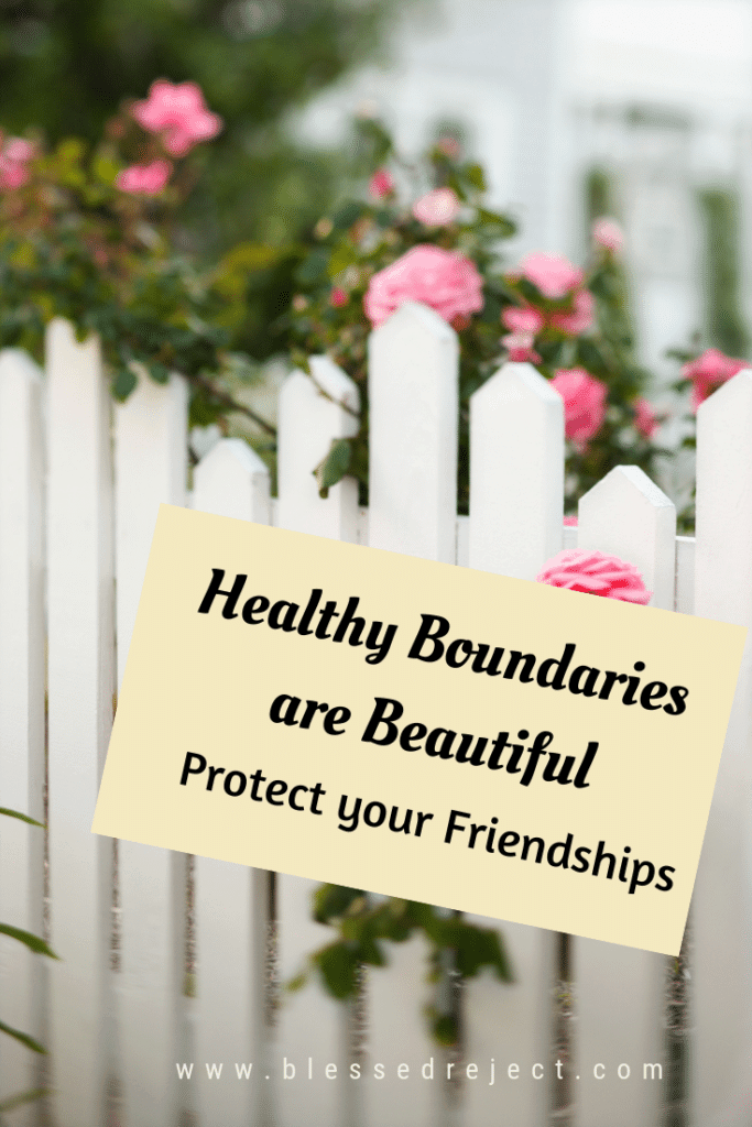 white picket fence with pink roses and healthy boundaries text